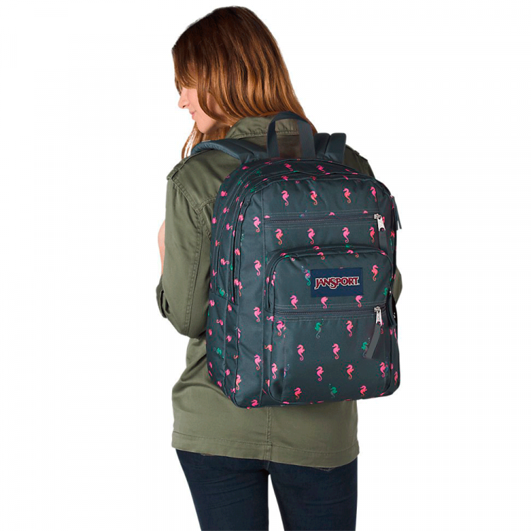 Mochila JanSport Big Student JS00TDN7-50D